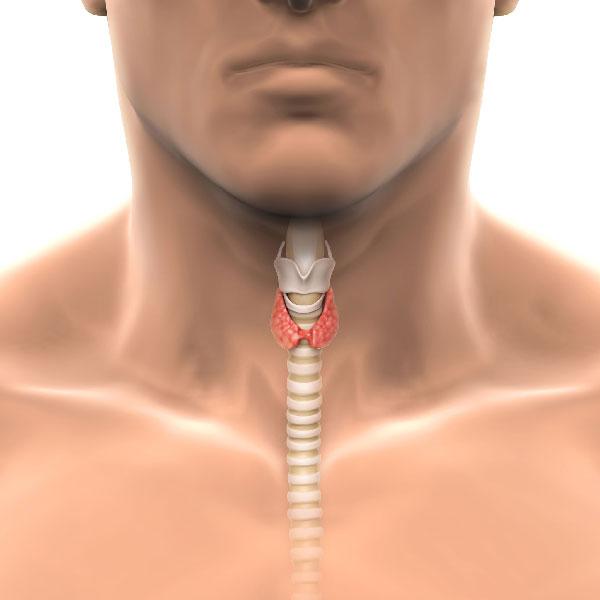 Chirurgie de la trachée
